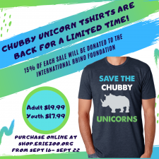 Chubby Unicorn Shirts Are Back!